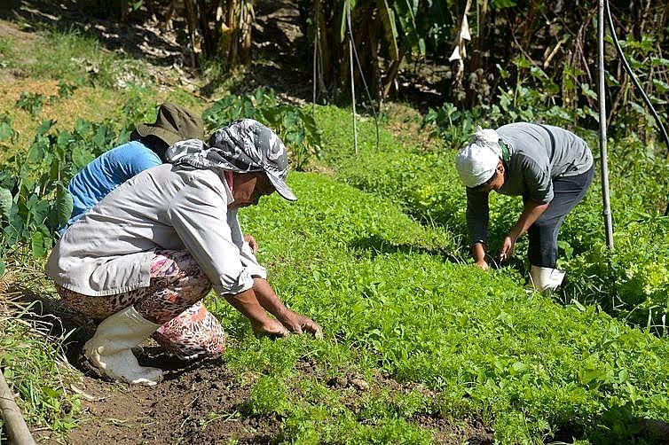 Proposta é discutir com agricultores, quilombolas, indígenas e populações ribeirinhas