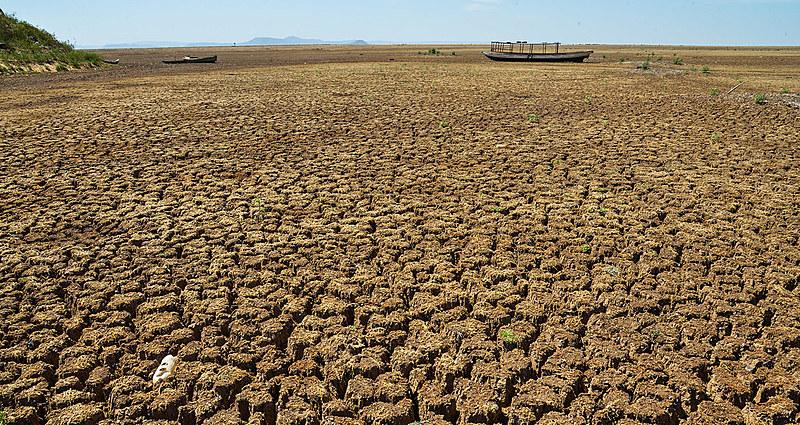 Estudos científicos calculam que a superfície terrestre em condições de seca passou para mais de 30% nos anos 2000