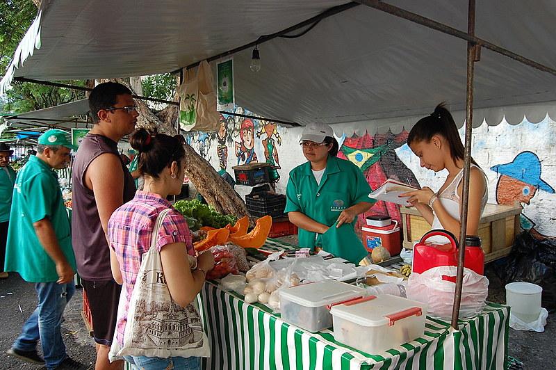 Comida saudável e comércio justo são opção econômica na RMR | Cidades