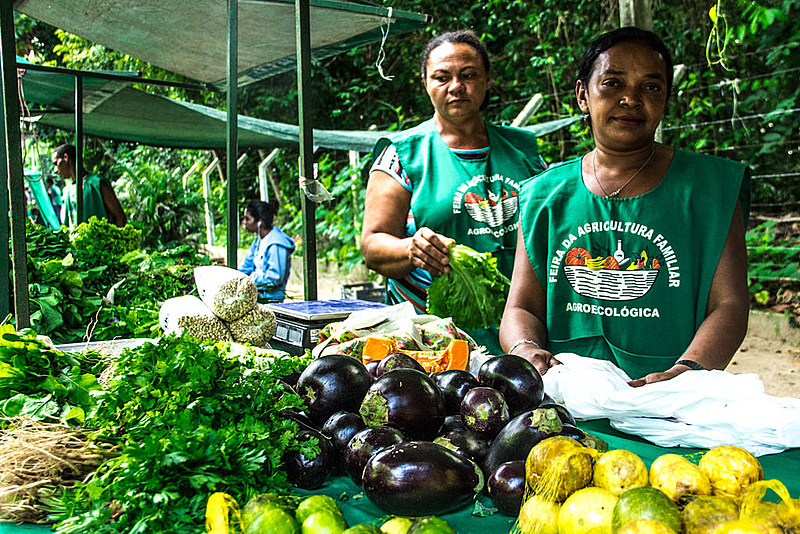 Na Paraíba existem cerca de cinquenta (50) feiras agroecológicas organizadas por assentados da reforma agrária e pequenos agricultores.