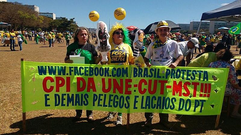 Manifestante quer CPI de movimentos e a volta da União Democrática Nacional (UDN)