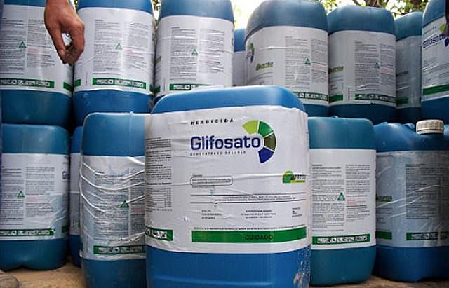 Agrotóxico mais vendido no mundo e no Brasil, o glifosato é proibido em vários países e está para ser banido na França