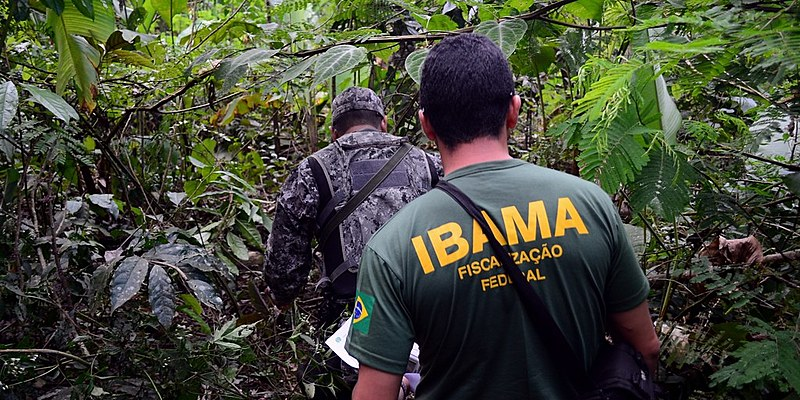 Sin concursos públicos desde 2014, Brasil perdió la mitad de sus fiscales ambientales en una década