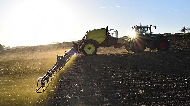 Máquina dispersa névoa amarela de glifosato sobre plantação de milho