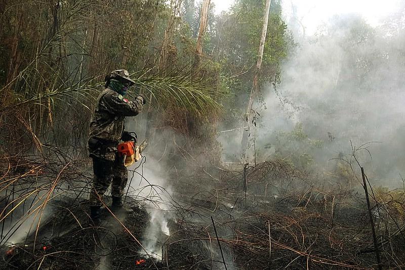 Brigada combate fogo em mata de Rondônia no início de setembro