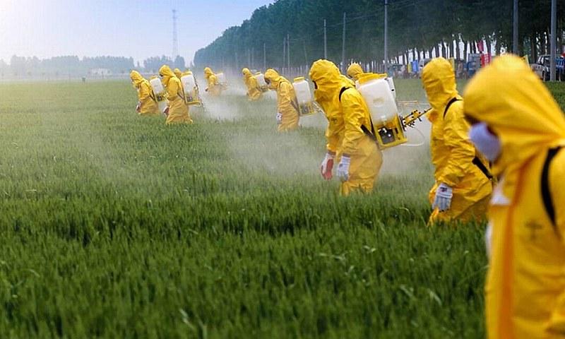Compra da Monsanto, conhecida pela fabricação de venenos, aumentou as tensões internas na alemã Bayer