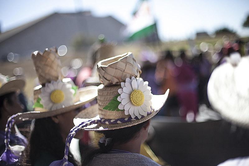 Movimento é marcado pelas camisetas lilás e pelos chapéus de palha decorados com margaridas
