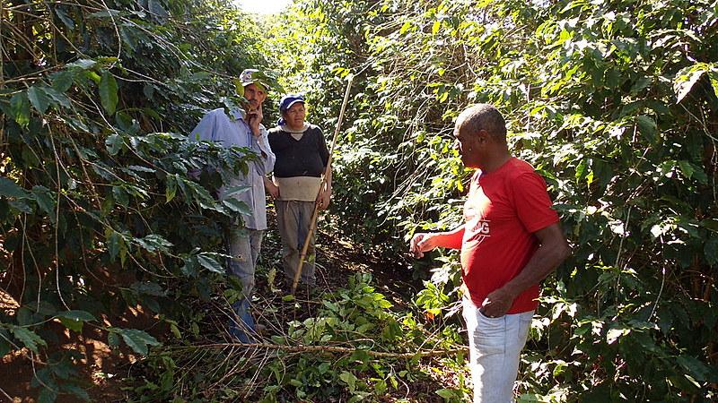"""""""Se fiscalizassem mais, seriam constatadas muito mais práticas de trabalho escravo"""", avalia o dirigente da Adere-MG"""