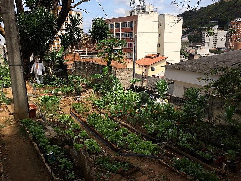 Horta Quintal na Cidade, centro de Vitória, capital do Espírito Santo