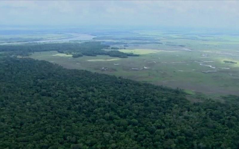 A reserva abriga nove áreas de preservação florestal entre unidades de conservação, parques e duas terras indígenas