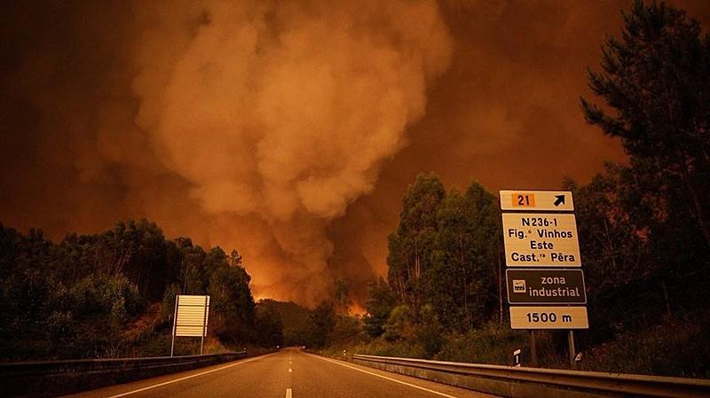 Incêndio tem comovido sociedade portuguesa