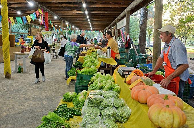 Produção orgânica in natura e delícias da agroindústria ecológica podem ser encontradas na feira nas quartas e sábados