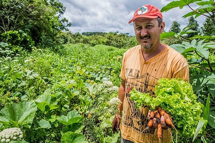 Cooperativa criada comercializa produção de 230 famílias de 5 municípios