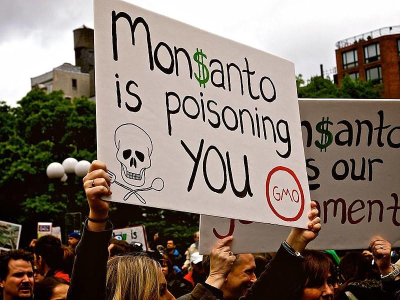 """""""A Monsanto está envenenando você"""": marcha contra a Monsanto em Nova York em 2013"""