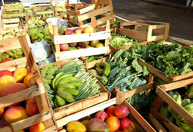 frutas e hortaliças