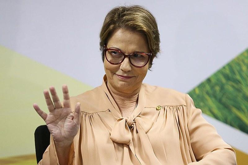 Ministra defendeu uso de agrotóxicos como imprescindível para agricultura brasileira