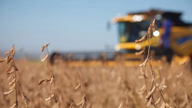 Atualmente, 2.152 produtos elaborados com agrotóxicos estão em circulação no Brasil