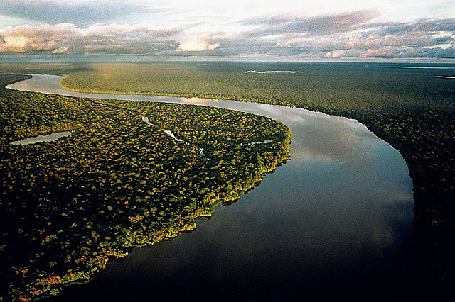 International experts are concerned about what could happen to the Brazilian Amazon if Bolsonaro wins tomorrow