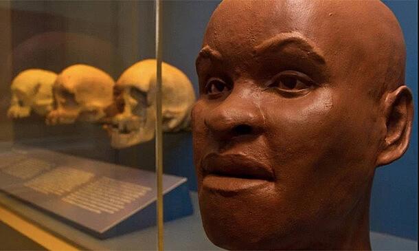 Fóssil Luzia é o mais antigo fóssil das Américas e considerada a primeira brasileira que viveu há 13 mil anos