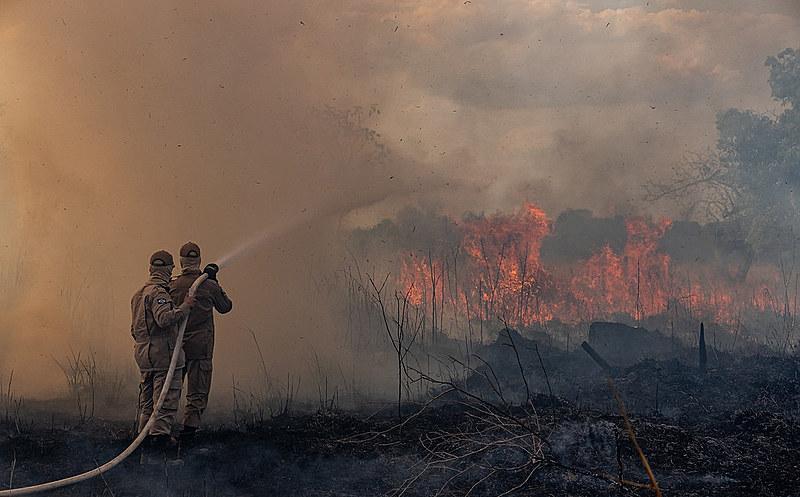 Denúncia ocorre após intenso aumento no número de queimadas na região da Amazônia