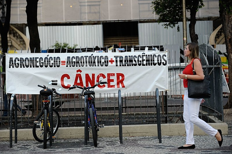 No Rio de Janeiro, Dia Internacional de Luta contra os Agrotóxicos tem ato em frente a Câmara dos Vereadores