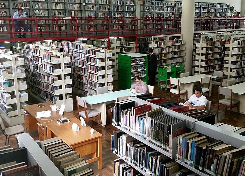 Em média, são mais de mil empréstimos de livro por dia