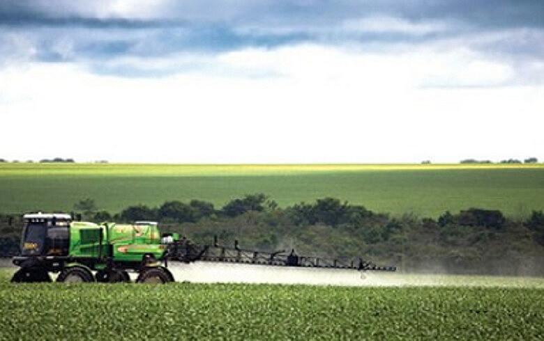 As sementes transgênicas, que dependem de fertilizantes e agrotóxicos, contaminam lavouras convencionais