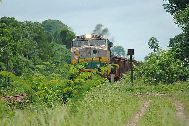 El tren de la Vale, que causó la muerte de 39 personas en ocho años, atraviesa el territorio indígena Mãe Maria [Madre María]
