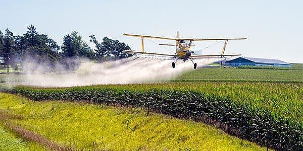 O mercado da comida gera doença desde a produção envenenada do agronegócio até a fabricação dos ultraprocessados