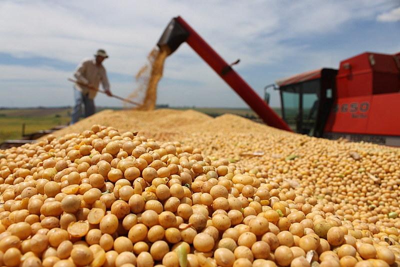16 milhões de hectares são utilizados apenas para atender a demanda por commodities da China, aponta estudo