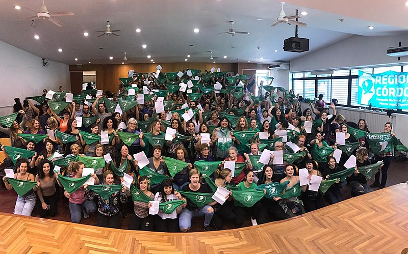 Integrantes da Campanha Nacional pelo Aborto Legal durante plenária que aprovou a nova versão do projeto