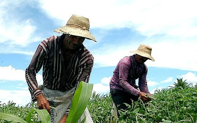 Presidente da Contag e dirigente do MST criticam políticas de Bolsonaro para os trabalhadores rurais