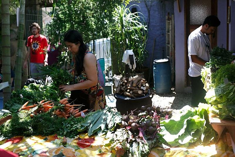 Através da alimentação saudável, espaço Raízes do Brasil, organizado pelo MPA, integra agroecologia e alimentação saudável
