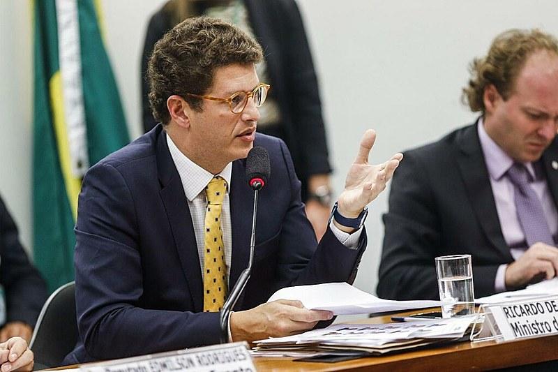 Ministro do Meio Ambiente, Ricardo Salles, durante sabatina na Câmara dos Deputados