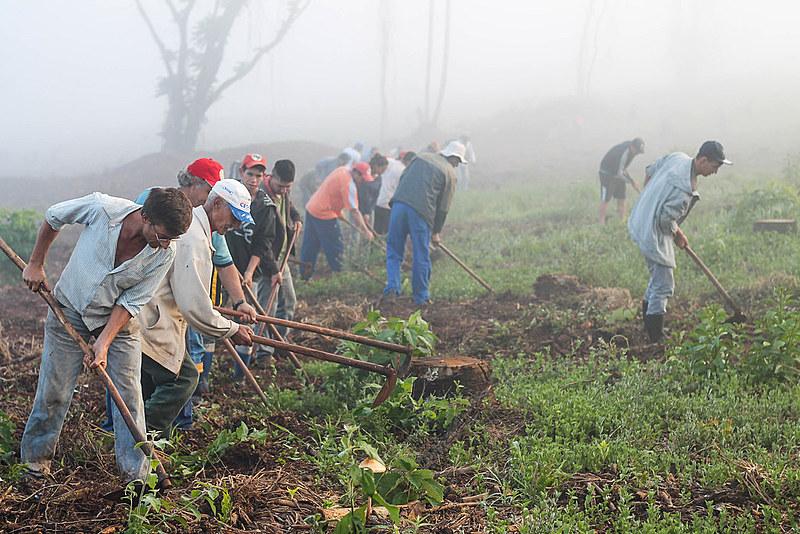 Trabalhadores rurais entregavam  produção para o Programa de Aquisição de Alimentos (PAA)