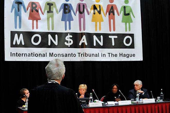Durante três dias, cinco juízes ouviram 30 depoimentos de pessoas prejudicadas pela Monsanto em tribunal popular realizado em Haia
