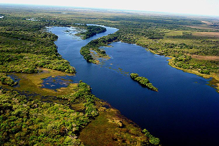 Áreas estaduais de proteção florestal estão na mira da bancada ruralista