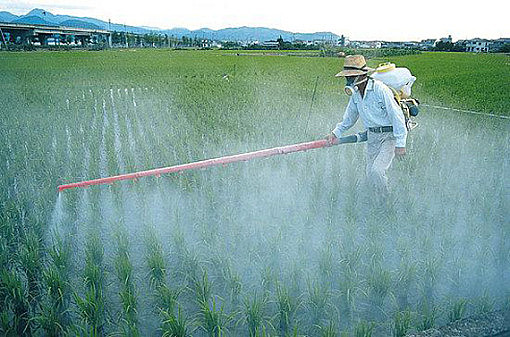 O Brasil é o maior consumidor mundial de substâncias agrotóxicas