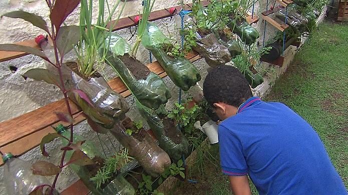 As hortas urbanas proporcionam o fortalecimento da vida comunitária e o aproveitamento de áreas urbanas até então inutilizadas
