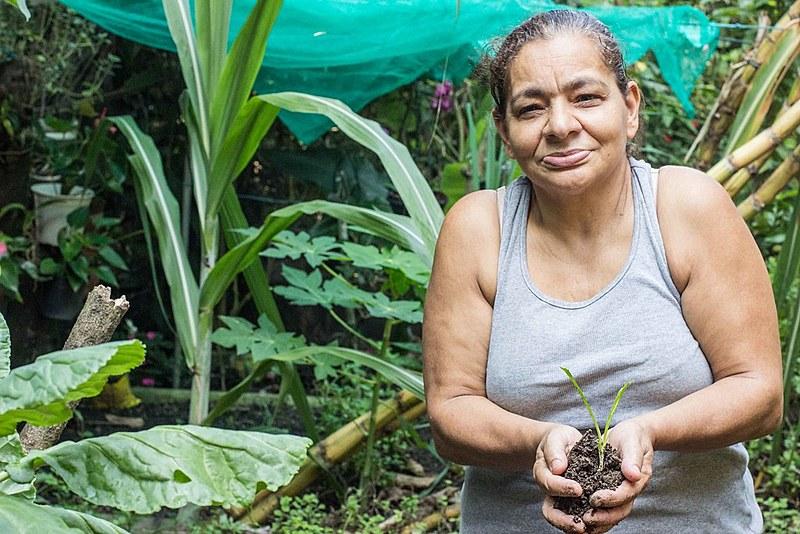 Trabalho comunitário nas favelas do Leme produz orgânicos